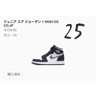 NIKE - 即支払い限定 25cm NIKE AIR JORDAN 1 CO.JP
