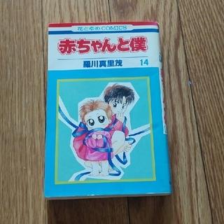 ハクセンシャ(白泉社)の赤ちゃんと僕(14)(少女漫画)