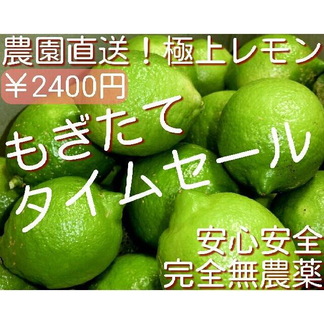 完全無農薬栽培 国産レモン グリーンレモン 瀬戸内レモン 無農薬レモン 1kg 食品/飲料/酒の食品(野菜)の商品写真