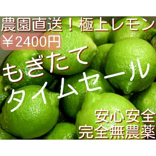 完全無農薬栽培 国産レモン グリーンレモン 瀬戸内レモン 無農薬レモン 1kg(野菜)