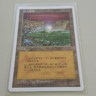 マジックザギャザリング(マジック:ザ・ギャザリング)のMTG 低木林地/Brushland(シングルカード)
