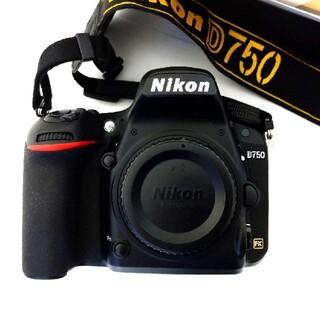 Nikon - Nikon D780  フルサイズ一眼レフ