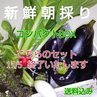 新鮮朝採り【野菜おためし♪ゆずセット】コンパクトBOX