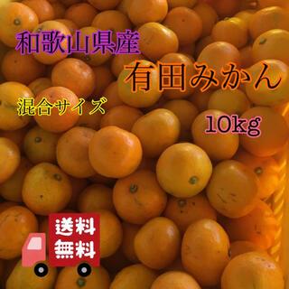和歌山県産 有田みかん 家庭用 混合サイズ 10kg(フルーツ)