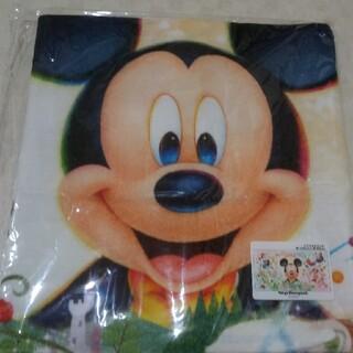 Disney - ディズニーランド 新エリア ワイドバスタオル