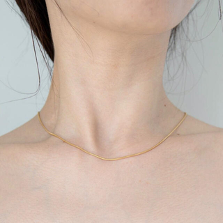 TODAYFUL - 残り1点!_Silver925,18kgp_Ines thin necklace