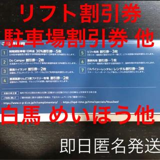 日本駐車場開発株式会社 株主優待券 割引券 利用券(スキー場)