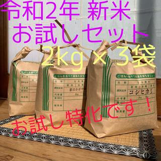 令和2年 お試しセット 2kg × 3袋 計6kg(米/穀物)