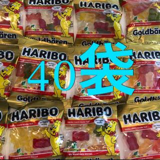 Golden Bear - ハリボー 40袋