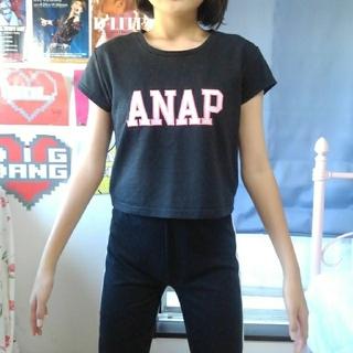 アナップ(ANAP)のANAP  ショート丈Tシャツ(Tシャツ(半袖/袖なし))