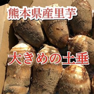 blue blue様専用里芋(野菜)