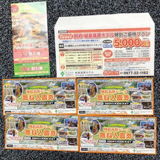 城島高原パーク無料入園券4枚+グルメお得クーポン(遊園地/テーマパーク)