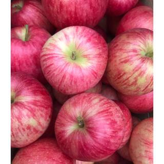 青森県産りんご ジョナゴールド訳あり約5kg(フルーツ)