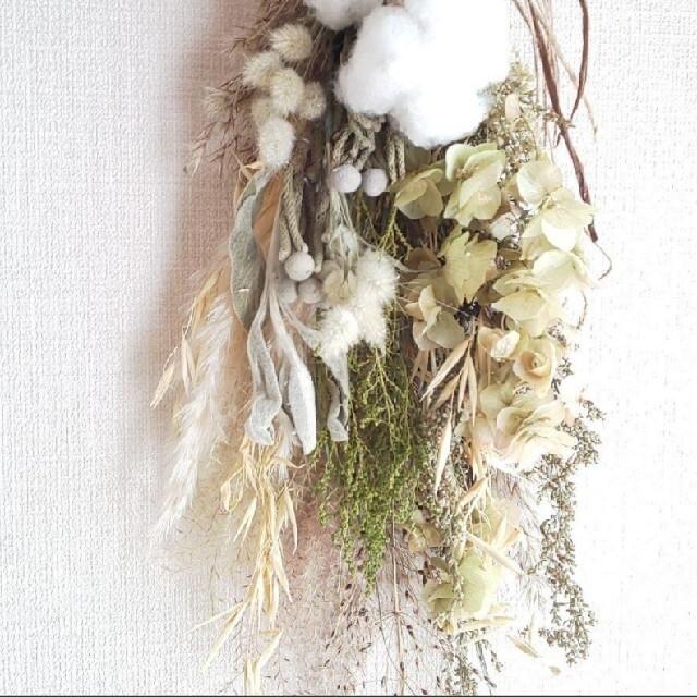 *専用*X'mas  コットン&オレガノ  ドライフラワースワッグ ハンドメイドのフラワー/ガーデン(ドライフラワー)の商品写真