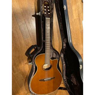 ヤマハ(ヤマハ)のYAMAHAAPX-6NA エレガット・クラシックギター(クラシックギター)