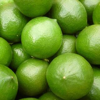 国産レモン 話題のマイヤーレモン5kg 40個位 訳あり(フルーツ)