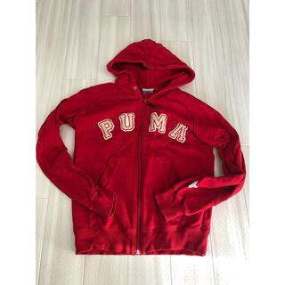 プーマ(PUMA)のPUMA☆パーカー☆レディースMサイズ☆キッズ140.150.160(ジャケット/上着)