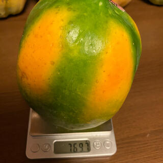 石垣島産高級種無しフルーツパパイヤ(フルーツ)