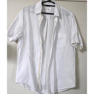 イッカ(ikka)の半袖シャツ(シャツ)