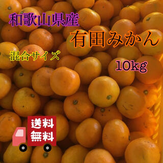 和歌山県産 有田みかん 混合サイズ 10kg(フルーツ)