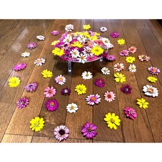お花屋さんが作った秋色ジニアのドライフラワー山盛り50冠です‼️(ドライフラワー)
