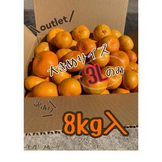 【訳あり】大玉 みかん 8kg 《3L》*福岡立花産* 産地直送(フルーツ)