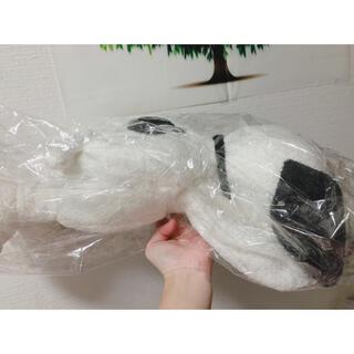 ジェラートピケ(gelato pique)の新品★ジェラートピケ★スヌーピー ティッシュケース(ティッシュボックス)