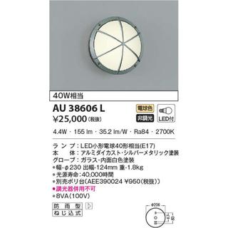 コイズミ(KOIZUMI)のコイズミ照明 防雨型ブラケット AU38606L(天井照明)