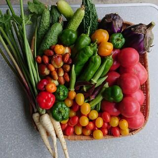 詳細ページです(о´∀`о)♪無農薬野菜セット♪(野菜)