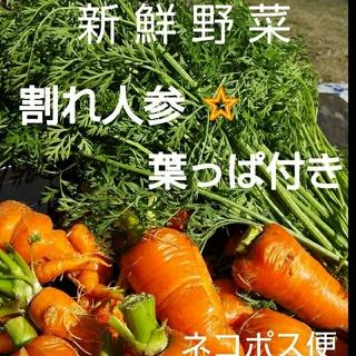 新鮮野菜【にんじん葉っぱ付】農薬不使用(野菜)
