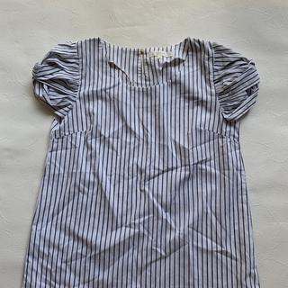 グローブ(grove)のボリュームスリーブブラウス(シャツ/ブラウス(半袖/袖なし))