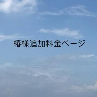 椿様追加料金ページ(レビューブックカバー )(ブックカバー)