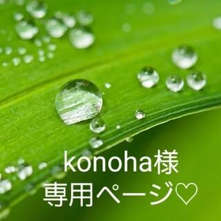 konoha様専用ページ♡(野菜)