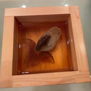 深堀隆介 金魚酒 木曽檜一合枡 2008年 サイン付(彫刻/オブジェ)