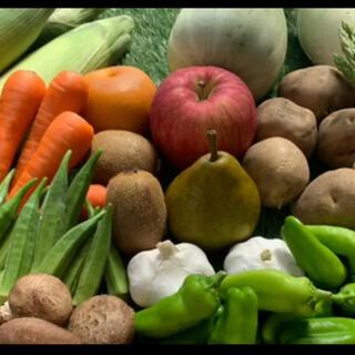 無農薬新鮮野菜果物セット6種類以上(野菜)