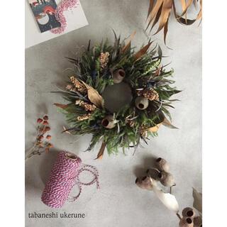 冬支度に暖かな彩りを添える グレビレアやナッツを束ねた リース ドライフラワー(ドライフラワー)