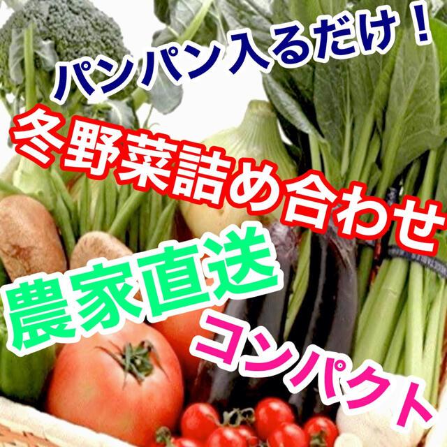 採れたて発送冬野菜詰め合わせコンパクトぱんぱん発送‼️送料無料 食品/飲料/酒の食品(野菜)の商品写真