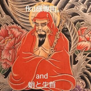 ラディアル(RADIALL)の「鯰達磨」A4サイズ 刺青 タトゥーフラッシュ(ミラー)