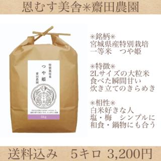 新米✼つやと香り✼宮城県産特別栽培米つや姫5キロ(米/穀物)