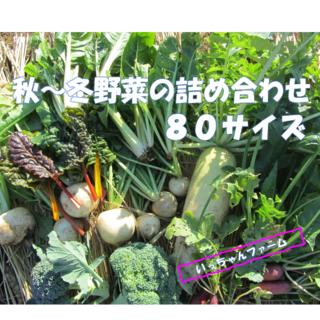 安全・安心 冬野菜詰め合わせ 80サイズ 12月13日以降の発送(野菜)