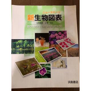 ニューステージ 新生物図表 生物基礎 生物(語学/参考書)