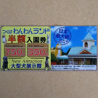 つくばわんわんランド 半額券(遊園地/テーマパーク)