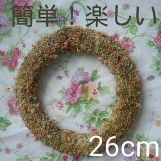 ⭕26cm多肉植物用リース(リース)