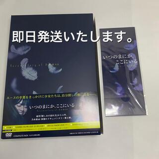 ノギザカフォーティーシックス(乃木坂46)の乃木坂46 いつのまにか ここにいる DVDコンプリートBOX 西野七瀬 未使用(アイドル)