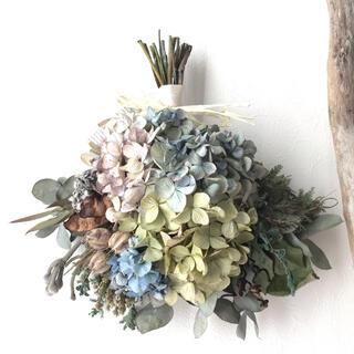 green×blue  4色の紫陽花のナチュラルドライフラワースワッグ(ドライフラワー)