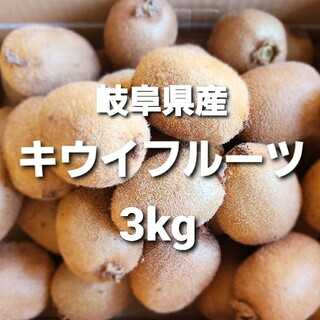 ③01 岐阜県産 無農薬 キウイフルーツ 3kg お得!(フルーツ)