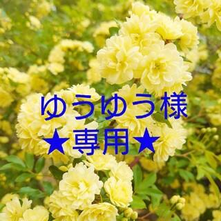シセイドウ(SHISEIDO (資生堂))の★エージー24 ビューティースムースパウダー★(ボディパウダー)
