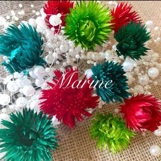 ミニシルバーデージー クリスマス花材 10輪 ハーバリウム花材(ドライフラワー)
