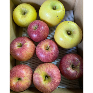 減農薬栽培山形産2kマツコも絶賛やたか小玉&シャリ感シナノゴールドりんご(フルーツ)