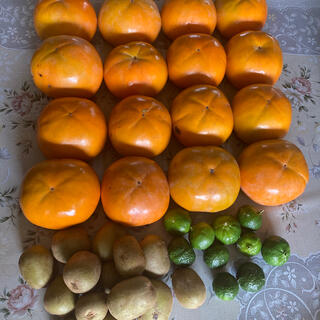 富有柿、レッドキウイ、シークワサーのセット(フルーツ)